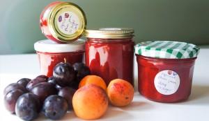 apricot_plum_jam_a_teaspoon_of_renate